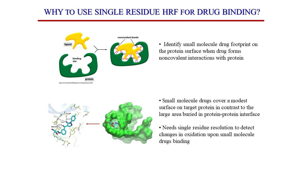 Drug Binding
